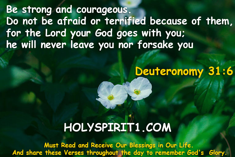 bible verses,bible,best bible verses,chapters and verses of the bible,most popular bible verses,verses,inspirational bible verses,bible verses about hope,holy bible,the bible (religious text),encouraging bible verses,sleep bible verses,bible verses for sleep,short bible verses,bible verses about faith,bible verses about healing,daily bible verse,bible verse of the day,bible quotes, bible quotes,bible,bible verses,quotes,the bible (religious text),best bible verses,quote,bible god quotes,bible words,chapters and verses of the bible,love,bible scriptures,\bible quotes\,bible quotes images,the bible quote,bible quotes about love,bible quotes malayalam,bible quotes about life,inspirational quotes,bible quotes on marriage,bible quotes and sayings,bible quotes about faith,christian quotes,bible verses,bible,best bible verses,verses,bible verses for sleep,powerful bible verses,chapters and verses of the bible,most popular bible verses,sleep bible verses,favorite bible verses,10 bible verses for women,inspirational bible verses,bible quotes,bible verses for,rest bible verses,trust bible verses,bible verses about,women bible verses,girls bible verses,short bible verses,bible verses on love, deuteronomy 31:6,deuteronomy,book of deuteronomy (book),deuteronomy 31,deuteronomy 31:6 kjv,lion's mane (bible verse) deuteronomy 31:6,be strong and courageous (deuteronomy 31:6),vol. 11 deuteronomy 31:6 be strong and courageous,jesus,bible,christian,bible study,christianity,deuteronomy31:8,holy,god,prayer,sermon,scripture song,deut 31:6,truth,video,encouragement,church,prophecy,religion,salvation,revelation,gospel,memory verse