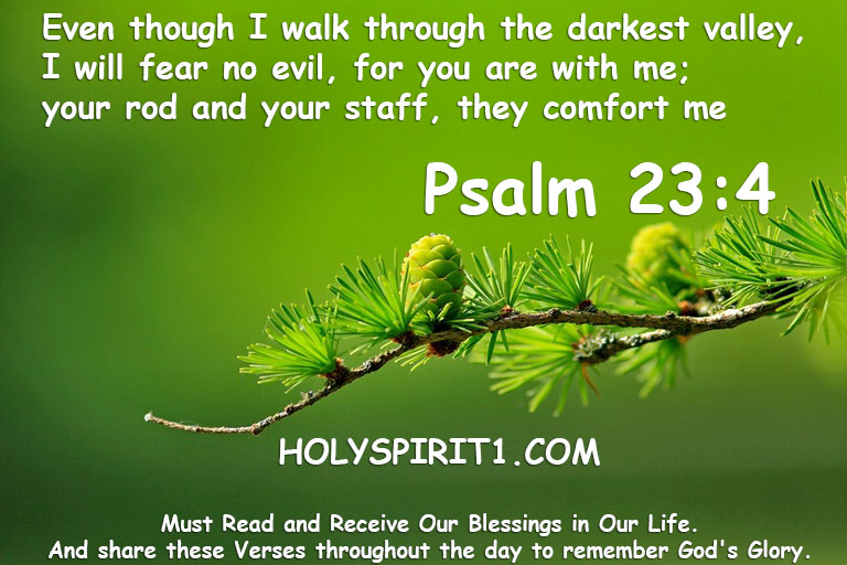 bible verses,bible,best bible verses,chapters and verses of the bible,most popular bible verses,verses,inspirational bible verses,bible verses about hope,holy bible,the bible (religious text),encouraging bible verses,sleep bible verses,bible verses for sleep,short bible verses,bible verses about faith,bible verses about healing,daily bible verse,bible verse of the day,bible quotes, bible quotes,bible,bible verses,quotes,the bible (religious text),best bible verses,quote,bible god quotes,bible words,chapters and verses of the bible,love,bible scriptures,\bible quotes\,bible quotes images,the bible quote,bible quotes about love,bible quotes malayalam,bible quotes about life,inspirational quotes,bible quotes on marriage,bible quotes and sayings,bible quotes about faith,christian quotes,bible verses,bible,best bible verses,verses,bible verses for sleep,powerful bible verses,chapters and verses of the bible,most popular bible verses,sleep bible verses,favorite bible verses,10 bible verses for women,inspirational bible verses,bible quotes,bible verses for,rest bible verses,trust bible verses,bible verses about,women bible verses,girls bible verses,short bible verses,bible verses on love, psalm 23,psalm,psalms,psalm 23:4,psalm 23 (written work),psalm23,23rd psalm,psalm of david,psalm 23 4,psalms 23 4,psalms 23,gospel,psalm 23 tattoo,psalm 23 tattoos,psalm 23 in hebrew,mens psalm 23 tattoos,bible,christian,psalm 23 tattoos for men,23 psalm song,psalms (book),psalms sleep,book of psalms,most famous psalm,staff,christianity,jesus,lord,psalms sleep meditation,sermon,grace,psalms23,salvation,evangelism
