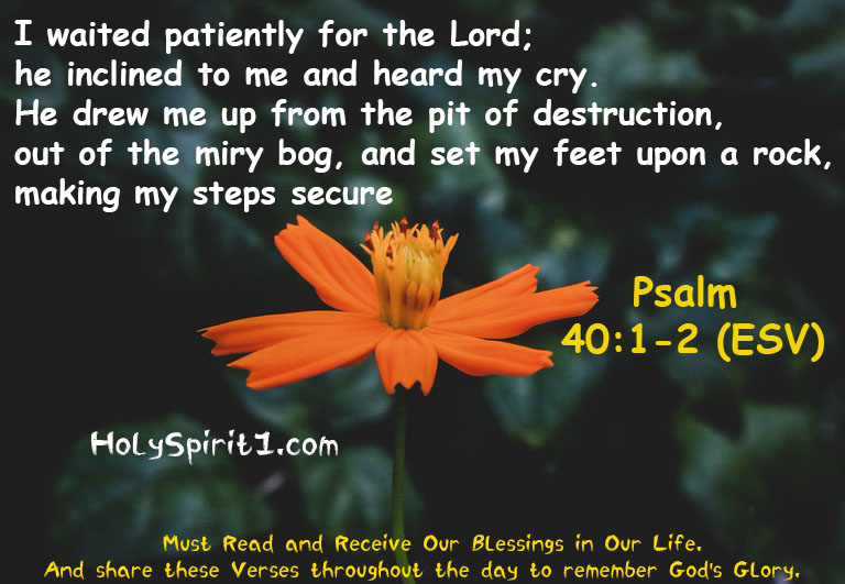 psalm,psalms,psalm 23,tori kelly psalm 42,shane & shane psalms,psalm 18,psalm 52,psalm 42,psalmy,psalm 31,psalm 91,psalm 121,clg psalm,israel,psalm23,psalmen,psalms 91,psalms 18,psalms 62,psalm yamma,psalm 91 kjv,the psalms,gospel,psalm project,psalm isadora,die psalmen,psalms 91 kjv,psalm world cup,psalm fortnite,fortnite psalm,pslam 91,psalms poetry,book of psalms,psalms of david,psalm 91 for sleep, bible verses,bible,best bible verses,chapters and verses of the bible,most popular bible verses,verses,inspirational bible verses,bible verses about hope,holy bible,the bible (religious text),encouraging bible verses,sleep bible verses,bible verses for sleep,short bible verses,bible verses about faith,bible verses about healing,daily bible verse,bible verse of the day,bible quotes, bible quotes,bible,bible verses,quotes,the bible (religious text),best bible verses,quote,bible god quotes,bible words,chapters and verses of the bible,love,bible scriptures,\bible quotes\,bible quotes images,the bible quote,bible quotes about love,bible quotes malayalam,bible quotes about life,inspirational quotes,bible quotes on marriage,bible quotes and sayings,bible quotes about faith,christian quotes,bible verses,bible,best bible verses,verses,bible verses for sleep,powerful bible verses,chapters and verses of the bible,most popular bible verses,sleep bible verses,favorite bible verses,10 bible verses for women,inspirational bible verses,bible quotes,bible verses for,rest bible verses,trust bible verses,bible verses about,women bible verses,girls bible verses,short bible verses,bible verses on love