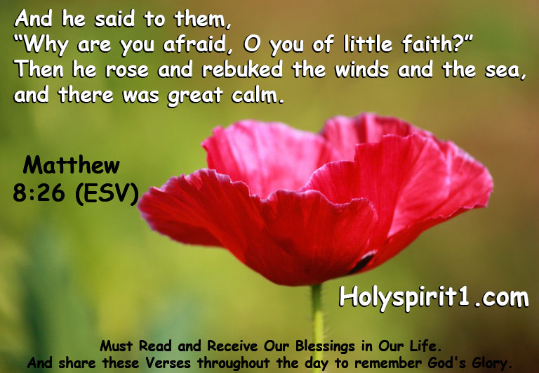bible verses,bible,best bible verses,chapters and verses of the bible,most popular bible verses,verses,inspirational bible verses,bible verses about hope,holy bible,the bible (religious text),encouraging bible verses,sleep bible verses,bible verses for sleep,short bible verses,bible verses about faith,bible verses about healing,daily bible verse,bible verse of the day,bible quotes, bible quotes,bible,bible verses,quotes,the bible (religious text),best bible verses,quote,bible god quotes,bible words,chapters and verses of the bible,love,bible scriptures,\bible quotes\,bible quotes images,the bible quote,bible quotes about love,bible quotes malayalam,bible quotes about life,inspirational quotes,bible quotes on marriage,bible quotes and sayings,bible quotes about faith,christian quotes,bible verses,bible,best bible verses,verses,bible verses for sleep,powerful bible verses,chapters and verses of the bible,most popular bible verses,sleep bible verses,favorite bible verses,10 bible verses for women,inspirational bible verses,bible quotes,bible verses for,rest bible verses,trust bible verses,bible verses about,women bible verses,girls bible verses,short bible verses,bible verses on love, matthew,matthew dota 2,gospel of matthew,matthew wm,matthew 14,matthew 15,matthew y ana,matthew dota,matthew guias,matthew hussy,matthew rubik,matthew allen,matthew sunat,matthew berry,matthew y smash,matthew hussey,matthew rubick,matthew and mary,matthew santoro,matthew support,matthew y papita,mary and matthew,smash vs matthew,matthew disband,gotto,matthew se loquea,matthew ti player,the book of matthew