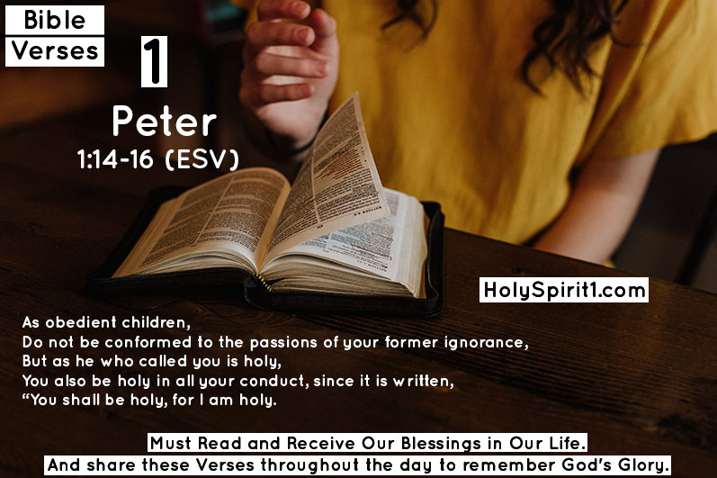 bible verses,bible,best bible verses,chapters and verses of the bible,most popular bible verses,verses,inspirational bible verses,bible verses about hope,holy bible,the bible (religious text),encouraging bible verses,sleep bible verses,bible verses for sleep,short bible verses,bible verses about faith,bible verses about healing,daily bible verse,bible verse of the day,bible quotes, bible quotes,bible,bible verses,quotes,the bible (religious text),best bible verses,quote,bible god quotes,bible words,chapters and verses of the bible,love,bible scriptures,\bible quotes\,bible quotes images,the bible quote,bible quotes about love,bible quotes malayalam,bible quotes about life,inspirational quotes,bible quotes on marriage,bible quotes and sayings,bible quotes about faith,christian quotes,bible verses,bible,best bible verses,verses,bible verses for sleep,powerful bible verses,chapters and verses of the bible,most popular bible verses,sleep bible verses,favorite bible verses,10 bible verses for women,inspirational bible verses,bible quotes,bible verses for,rest bible verses,trust bible verses,bible verses about,women bible verses,girls bible verses,short bible verses,bible verses on love, peter,peter weber,peter parker,peter griffin,weber,hannah and peter,peter cs,ellen peter weber,peterkz,peter weber bachelor,bachelor peter weber,peter weber hometowns,peter weber interview,peter and mj,peter weber girlfriend,peter rabbit,peter maffay,story of peter,rachel lindsay peter weber,perter weber bachelor 2020,peter and mj kiss,peter makes suit,peter parker mcu,peter and hannah,the bachelor, 1 peter,peter,1 peter 1,book of 1 peter,1 peter chapter 1,apostle peter,1 peter 1:1-12,1 peter 2:13-17,epistle of 1 peter,1 peter bible study,bible study in 1 peter,1peter,sermon on 1 peter 1:1-12,introduction to 1 peter,the book of 1 peter | kjv | au,1st peter,alexander scourby 1 peter,60 1 & 2 peter - rock solid - 2013,bible,letter,st. peter,jesus,new testament,saint peter