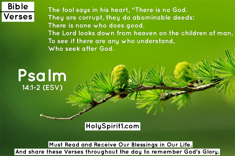 bible verses,bible,best bible verses,inspirational bible verses,verses,most popular bible verses,encouraging bible verses,chapters and verses of the bible,holy bible,bible quotes,short bible verses,bible verses about faith,bible verse of the day,short bible verses for kids,bible verses about encouragement,bible verses about faith and strength,shortest bible verses,rest bible verses,shocking bible verses, bible verses,bible,best bible verses,most popular bible verses,verses,sleep bible verses,favorite bible verses,powerful bible verses,bible verses for sleep,bible verses about faith,encouraging bible verses,thanksgiving bible verses,audio bible,chapters and verses of the bible,bible verses for,bible verses about,faith bible verses,famous bible verses,anxiety bible verses,courage bible verses, psalm,psalms,psalm 23,psalm west,book of psalms,tori kelly psalm 42,psalm 1,psalm 18,psalm 91,psalm 42,psalmy,psalm 121,psalm 126,psalm 122,psalm 104,clg psalm,psalms 91,psalms 62,psalm 91 kjv,psalm yamma,psalm trees,psalm songs,niv psalms,nlt psalms,psalms kjv,psalm 18 song,psalms (book),psalms 91 kjv,psalms poetry,psalm 104 hebrew,psalms of david,psalm 91 for sleep,psalms in hebrew,powerful psalms